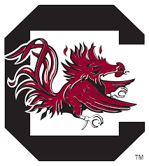 South Carolina playing for College World Series spot
