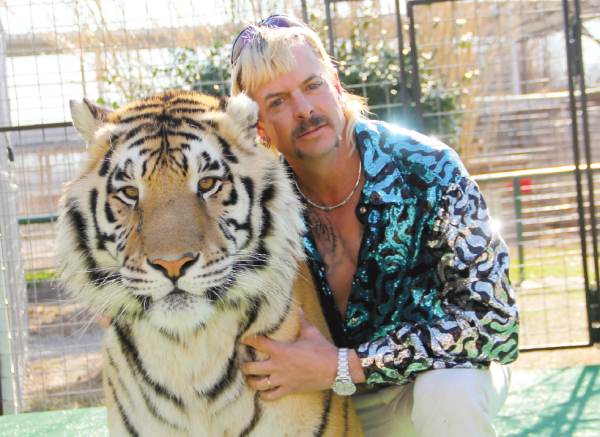 'Joe Exotic' sentenced to 22 years on murder-for-hire, wildlife crimes