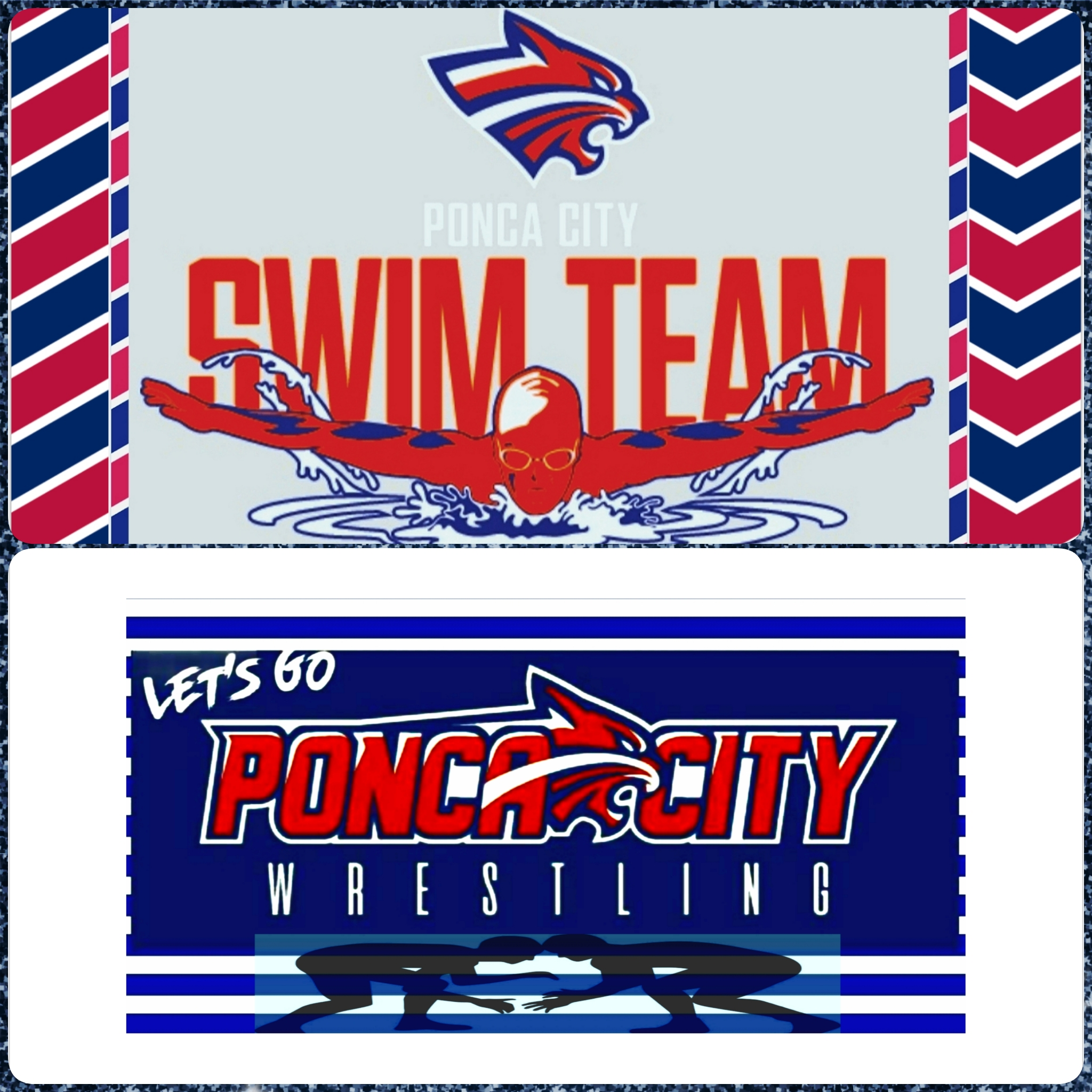 Wildcats Swim and Wrestling in Action This Week Starting Tuesday